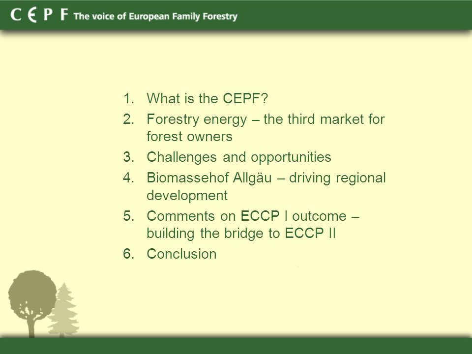 1.What is the CEPF.