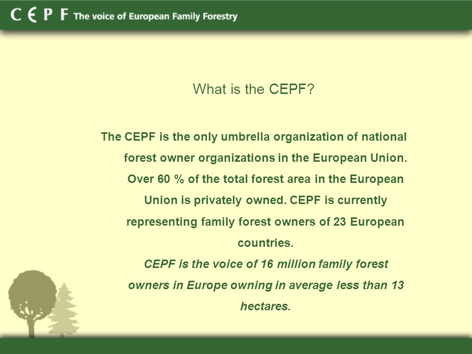 What is the CEPF.