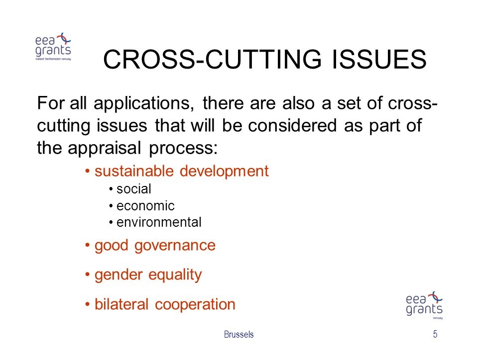 Brussels5 CROSS-CUTTING ISSUES For all applications, there are also a set of cross- cutting issues that will be considered as part of the appraisal process: sustainable development social economic environmental good governance gender equality bilateral cooperation