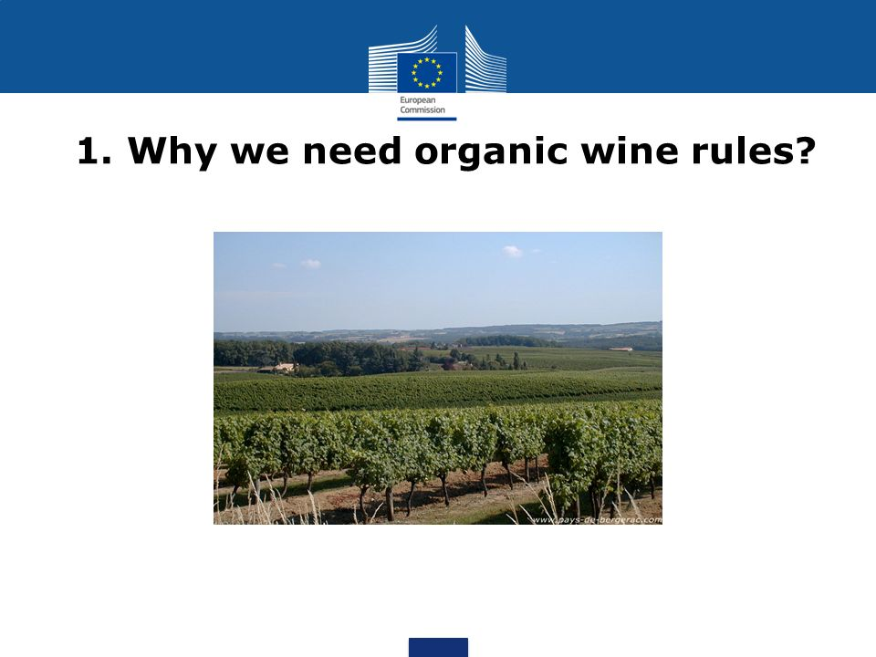 1. Why we need organic wine rules
