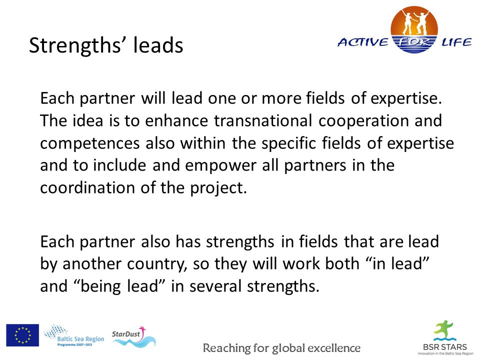 Reaching for global excellence Strengths leads Each partner will lead one or more fields of expertise.