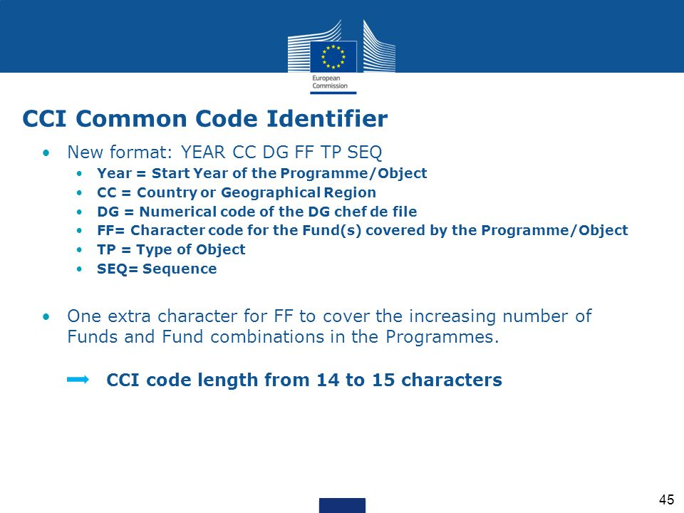 New format: YEAR CC DG FF TP SEQ Year = Start Year of the Programme/Object CC = Country or Geographical Region DG = Numerical code of the DG chef de f