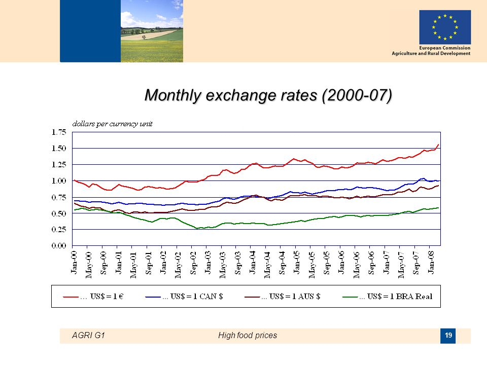 AGRI G1High food prices 19 Monthly exchange rates (2000-07)