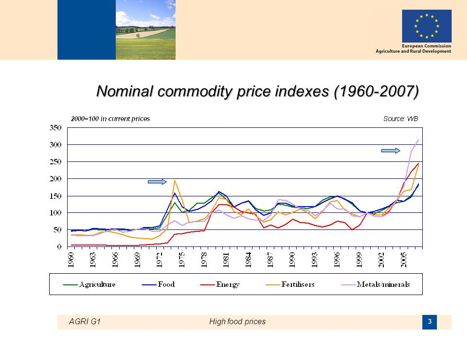 AGRI G1High food prices 3 Nominal commodity price indexes (1960-2007)