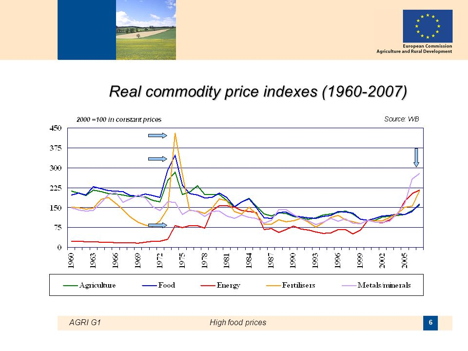 AGRI G1High food prices 6 Real commodity price indexes (1960-2007)