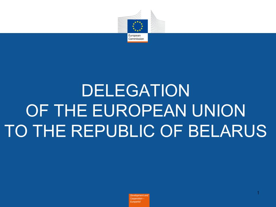 1 DELEGATION OF THE EUROPEAN UNION TO THE REPUBLIC OF BELARUS