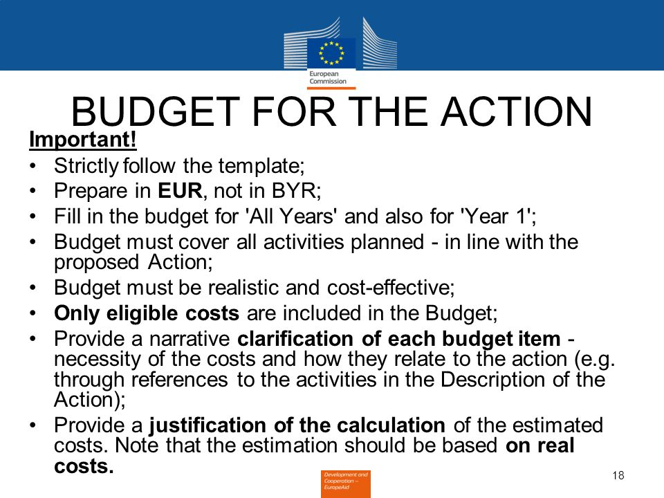 18 BUDGET FOR THE ACTION Important.