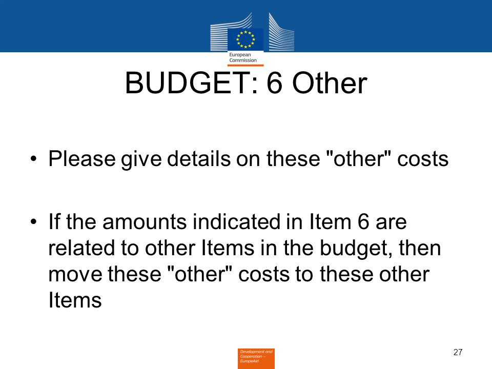 27 BUDGET: 6 Other Please give details on these other costs If the amounts indicated in Item 6 are related to other Items in the budget, then move these other costs to these other Items