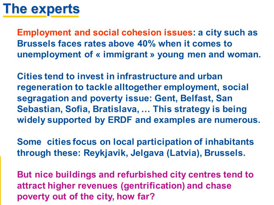 The experts Employment and social cohesion issues: a city such as Brussels faces rates above 40% when it comes to unemployment of « immigrant » young men and woman.