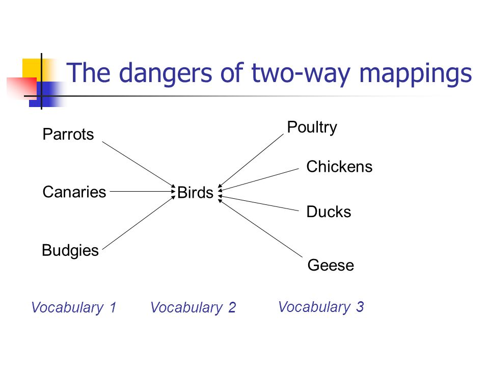 The dangers of two-way mappings Parrots Canaries Budgies Birds Poultry Chickens Ducks Geese Vocabulary 1Vocabulary 2 Vocabulary 3