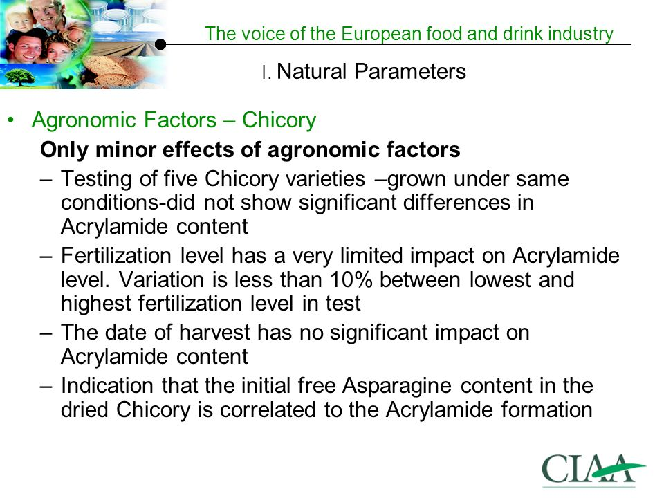 The voice of the European food and drink industry Agronomic Factors – Chicory Only minor effects of agronomic factors –Testing of five Chicory varieties –grown under same conditions-did not show significant differences in Acrylamide content –Fertilization level has a very limited impact on Acrylamide level.