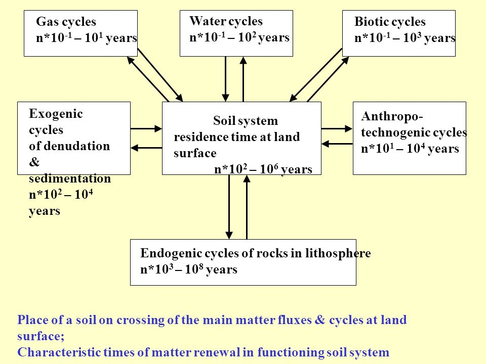 Gas cycles n*10 -1 – 10 1 years Water cycles n*10 -1 – 10 2 years Biotic cycles n*10 -1 – 10 3 years Place of a soil on crossing of the main matter fl