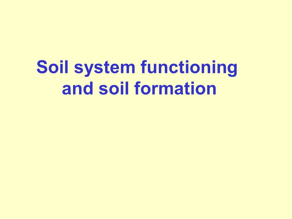 Soil system functioning and soil formation
