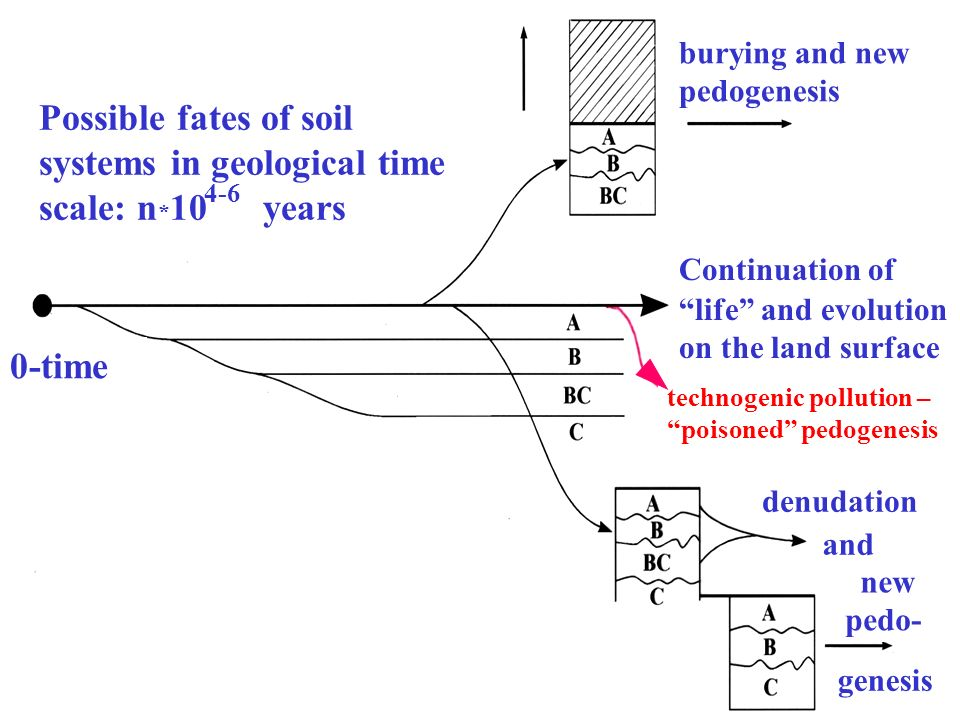 Possible fates of soil systems in geological time scale: n * 10 years 4-6 0-time burying and new pedogenesis Continuation of life and evolution on the
