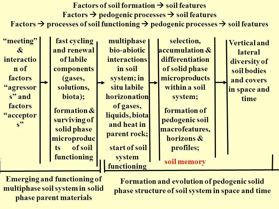 Factors of soil formation soil features Factors pedogenic processes soil features Factors processes of soil functioning pedogenic processes soil featu