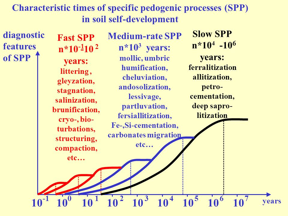 diagnostic features of SPP 10 10 10 10 10 10 10 10 10 01234567 years Characteristic times of specific pedogenic processes (SPP) in soil self-developme