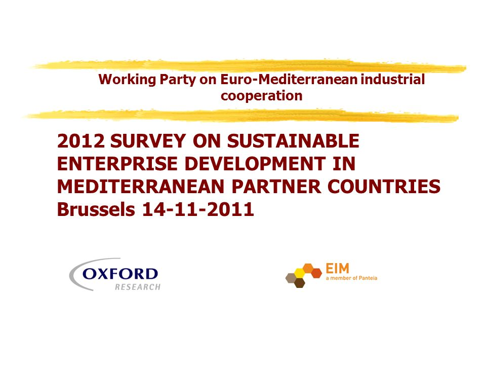 2012 SURVEY ON SUSTAINABLE ENTERPRISE DEVELOPMENT IN MEDITERRANEAN PARTNER COUNTRIES Brussels Working Party on Euro-Mediterranean industrial cooperation