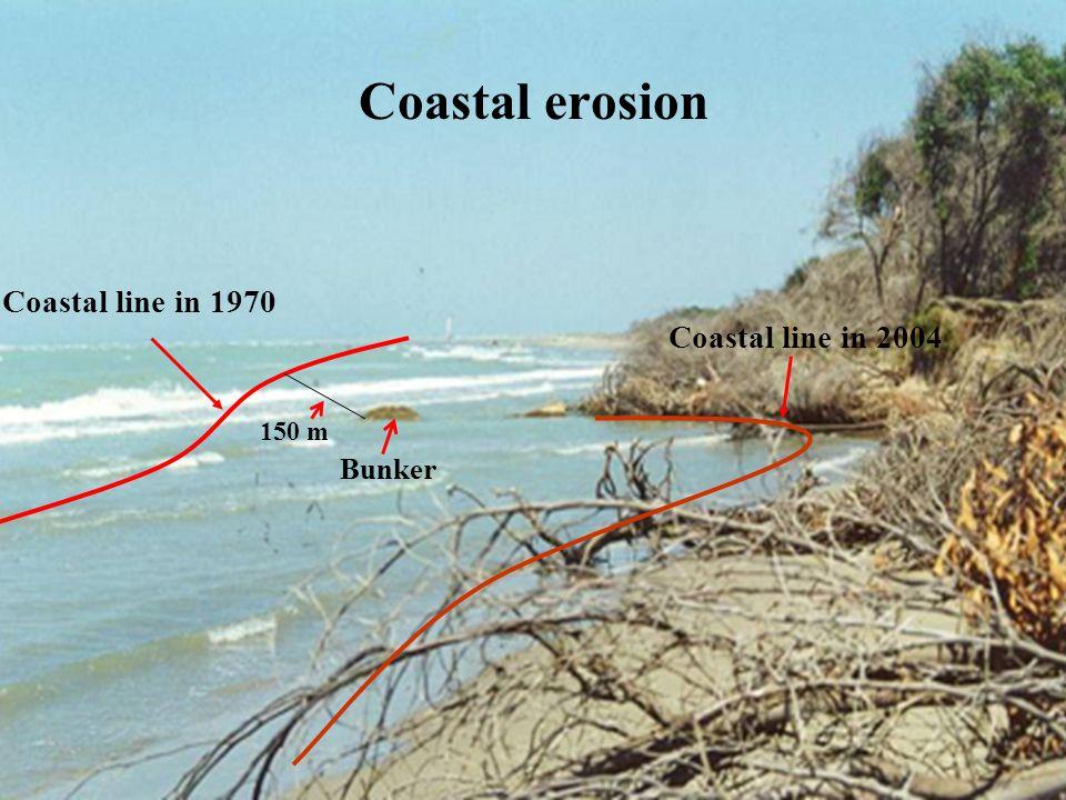 Coastal erosion Bunker Coastal line in 1970 150 m Coastal line in 2004