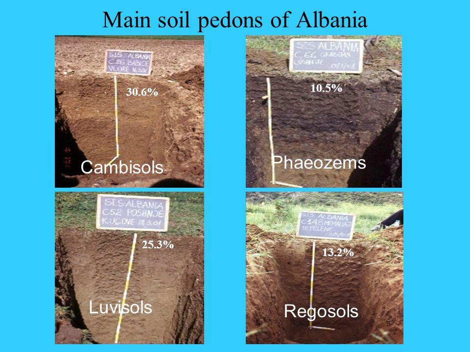 Main soil pedons of Albania Cambisols Phaeozems Regosols Luvisols 30.6% 25.3% 13.2% 10.5%