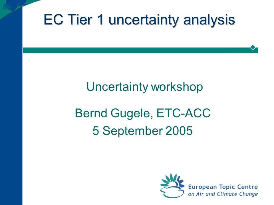 EC Tier 1 uncertainty analysis Uncertainty workshop Bernd Gugele, ETC-ACC 5 September 2005
