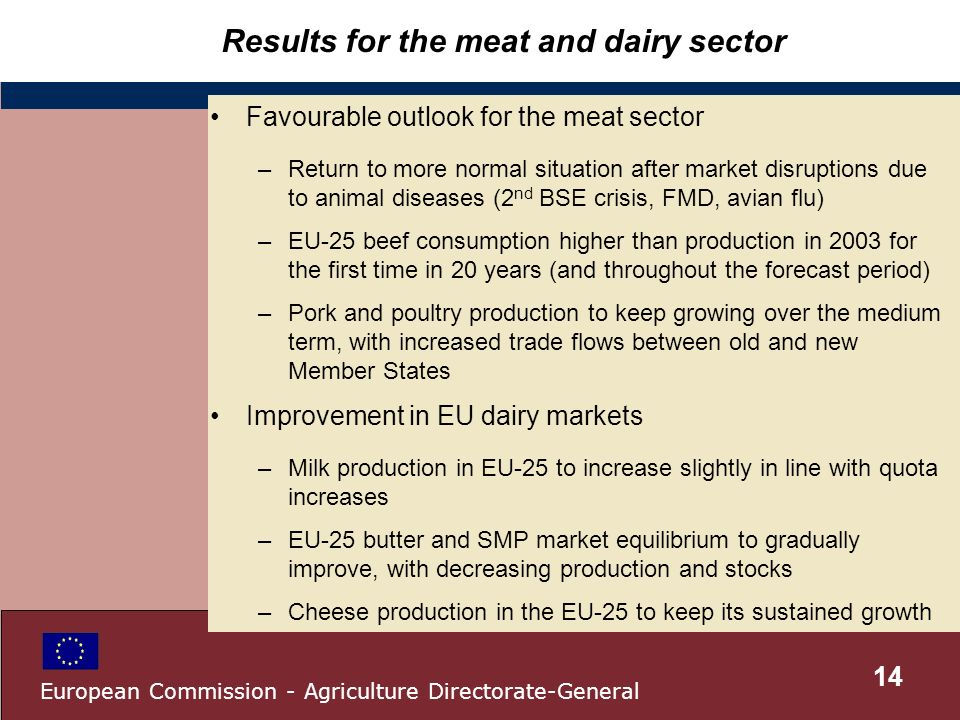 Results for the meat and dairy sector Favourable outlook for the meat sector –Return to more normal situation after market disruptions due to animal diseases (2 nd BSE crisis, FMD, avian flu) –EU-25 beef consumption higher than production in 2003 for the first time in 20 years (and throughout the forecast period) –Pork and poultry production to keep growing over the medium term, with increased trade flows between old and new Member States Improvement in EU dairy markets –Milk production in EU-25 to increase slightly in line with quota increases –EU-25 butter and SMP market equilibrium to gradually improve, with decreasing production and stocks –Cheese production in the EU-25 to keep its sustained growth 14 European Commission - Agriculture Directorate-General
