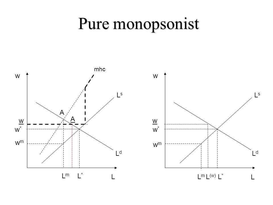 w wmwm LmLm L LsLs L*L* w*w* LdLd mhc w wmwm LmLm L*L* w*w* LsLs LdLd L w L (w) Pure monopsonist w A A