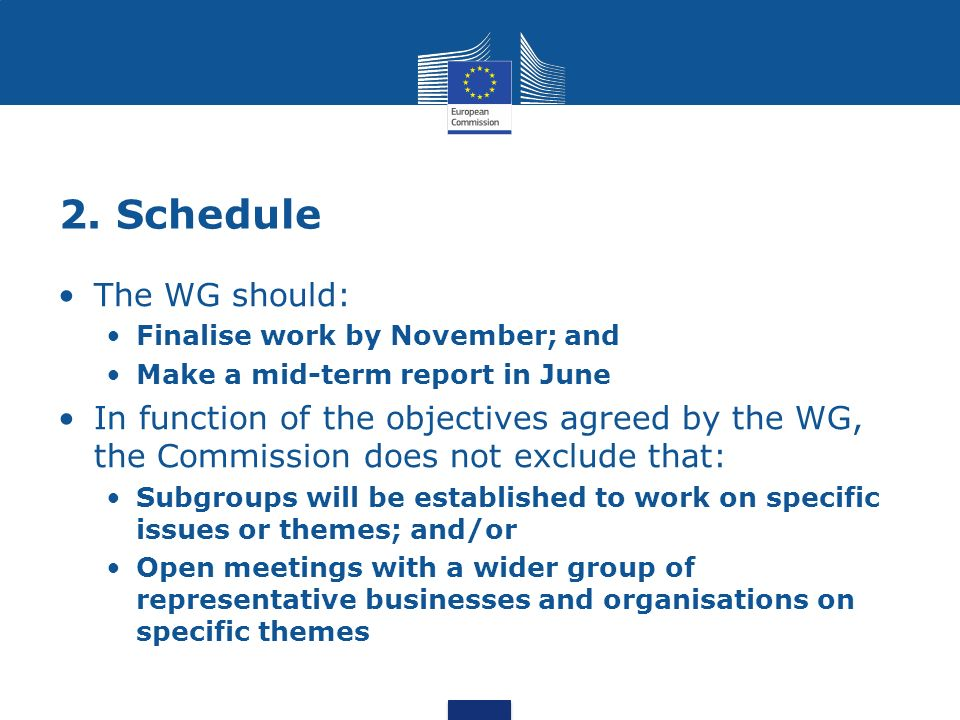 2. Schedule The WG should: Finalise work by November; and Make a mid-term report in June In function of the objectives agreed by the WG, the Commissio