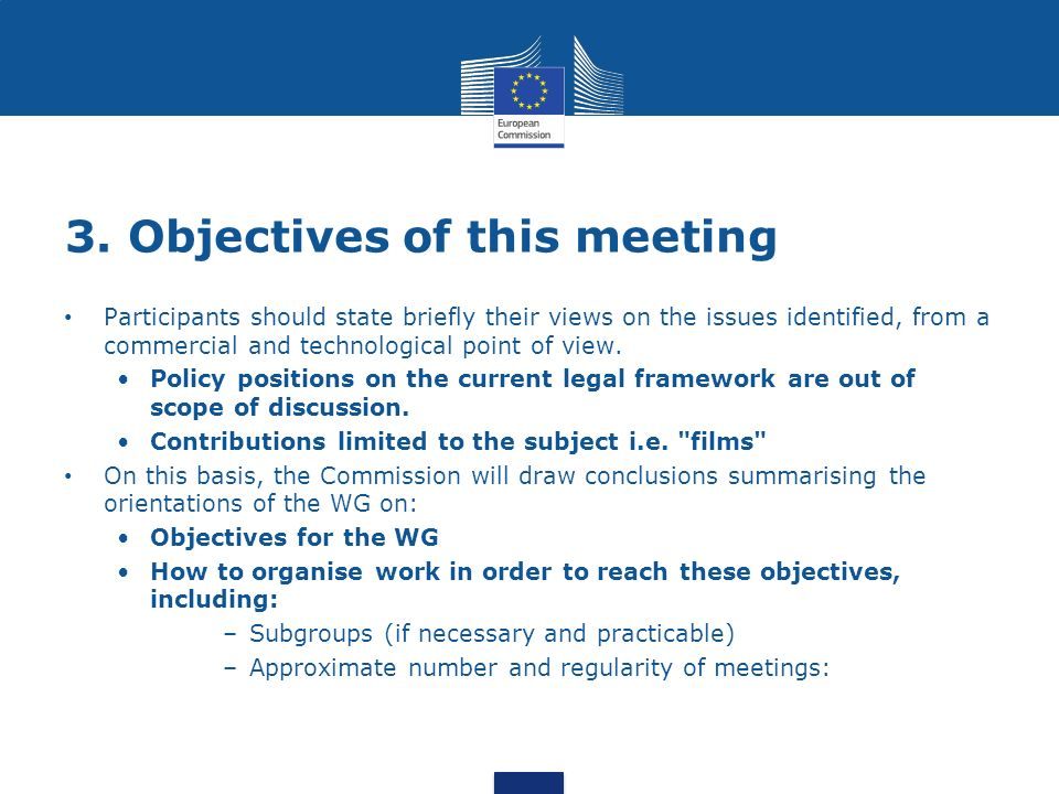 3. Objectives of this meeting Participants should state briefly their views on the issues identified, from a commercial and technological point of vie