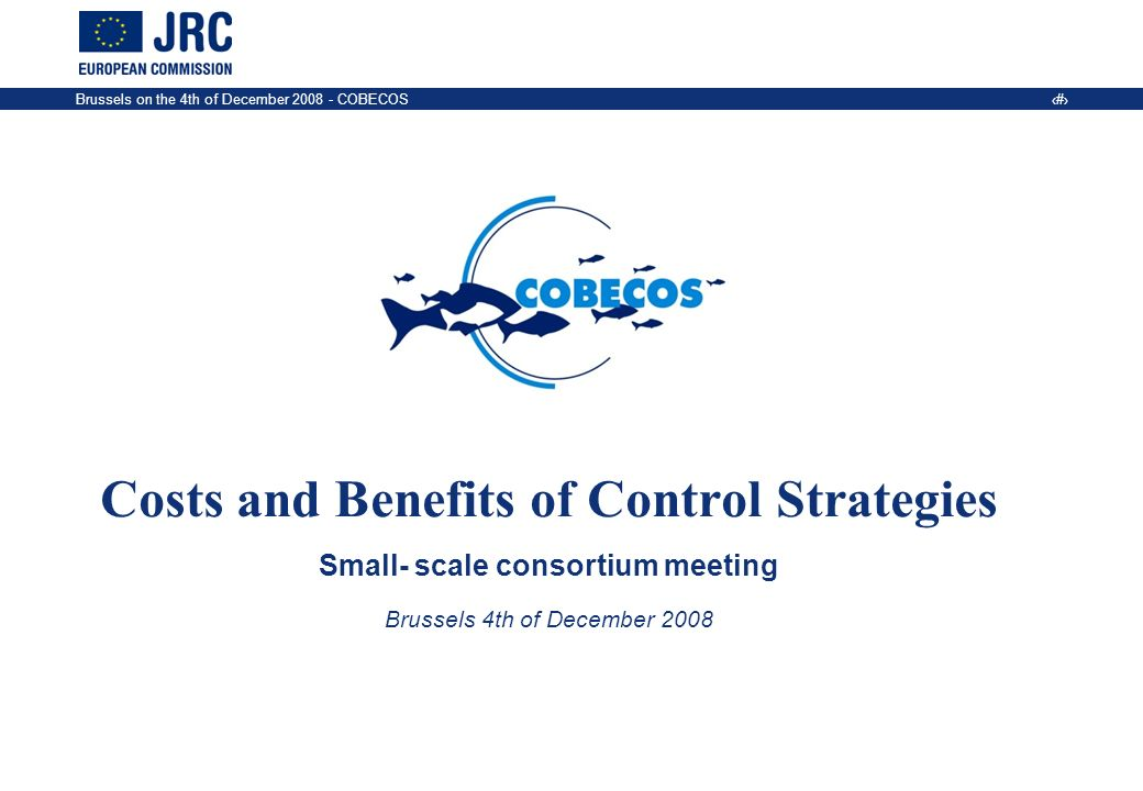 Brussels on the 4th of December COBECOS 1 Costs and Benefits of Control Strategies Small- scale consortium meeting Brussels 4th of December 2008