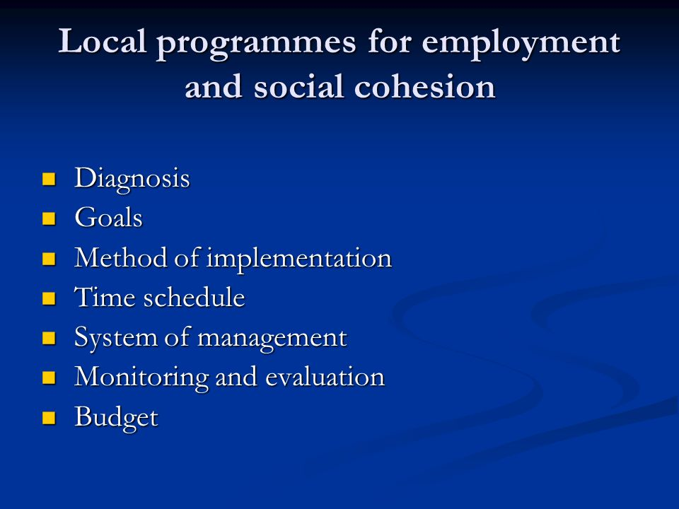 Local programmes for employment and social cohesion Diagnosis Diagnosis Goals Goals Method of implementation Method of implementation Time schedule Time schedule System of management System of management Monitoring and evaluation Monitoring and evaluation Budget Budget