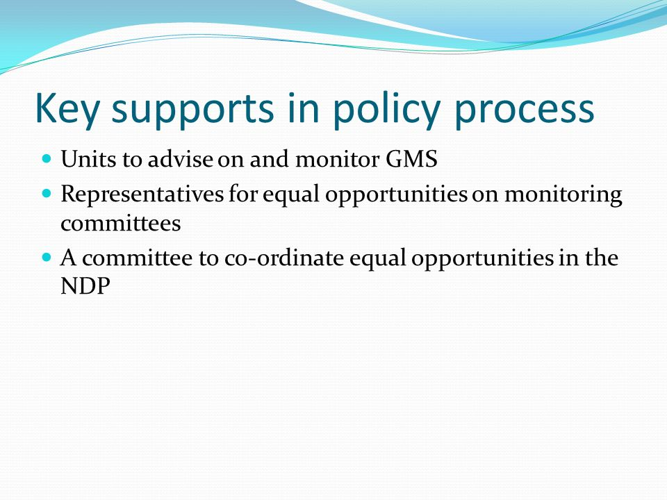 Key supports in policy process Units to advise on and monitor GMS Representatives for equal opportunities on monitoring committees A committee to co-ordinate equal opportunities in the NDP