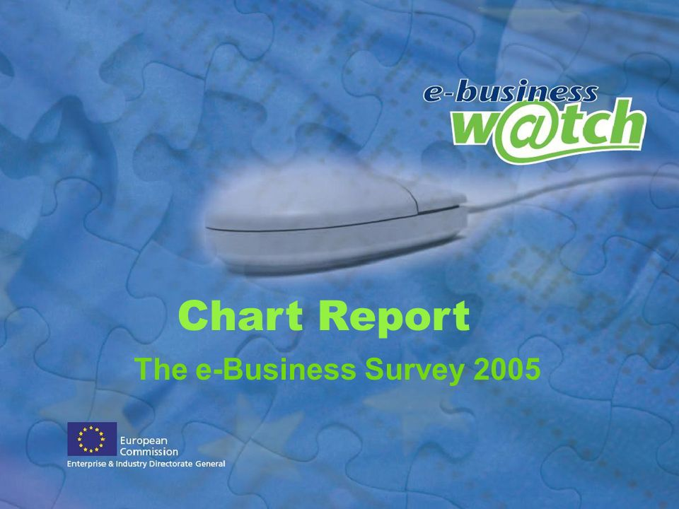 The e-Business Survey 2005 Chart Report
