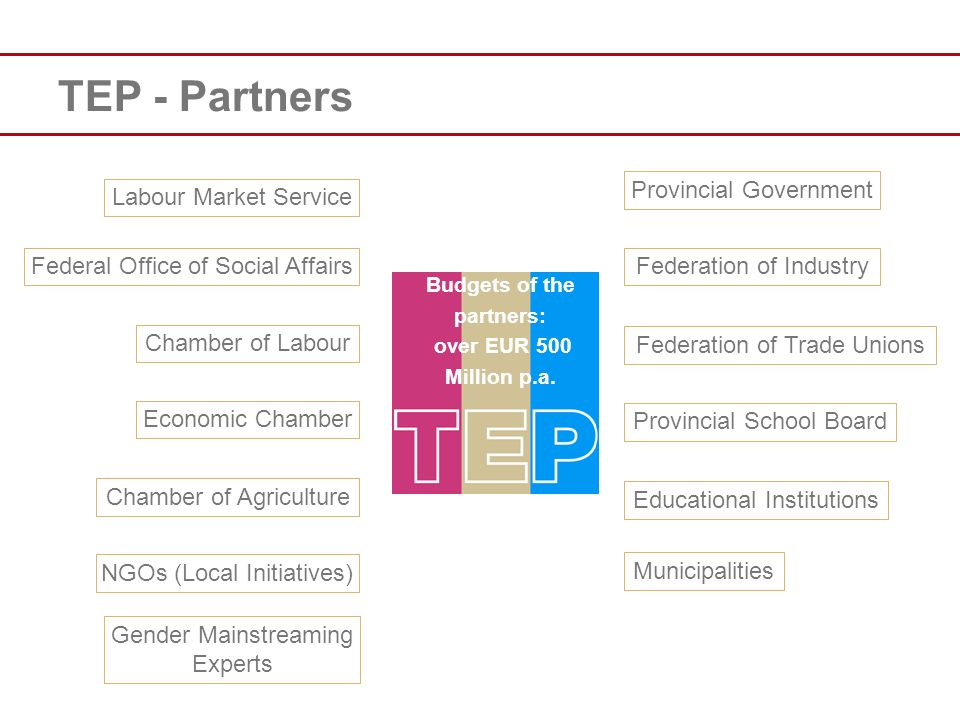 TEP - Partners Provincial Government Labour Market Service Federal Office of Social Affairs Chamber of Labour Economic Chamber Chamber of Agriculture