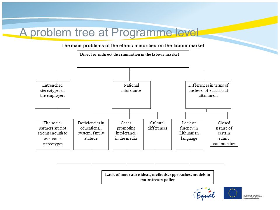 A problem tree at Programme level Direct or indirect discrimination in the labour market Closed nature of certain ethnic communities Differences in terms of the level of educational attainment Lack of innovative ideas, methods, approaches, models in mainstream policy Entrenched stereotypes of the employers National intolerance Cultural differences The social partners are not strong enough to overcome stereotypes Deficiencies in educational, system, family attitude Lack of fluency in Lithuanian language Cases promoting intolerance in the media The main problems of the ethnic minorities on the labour market