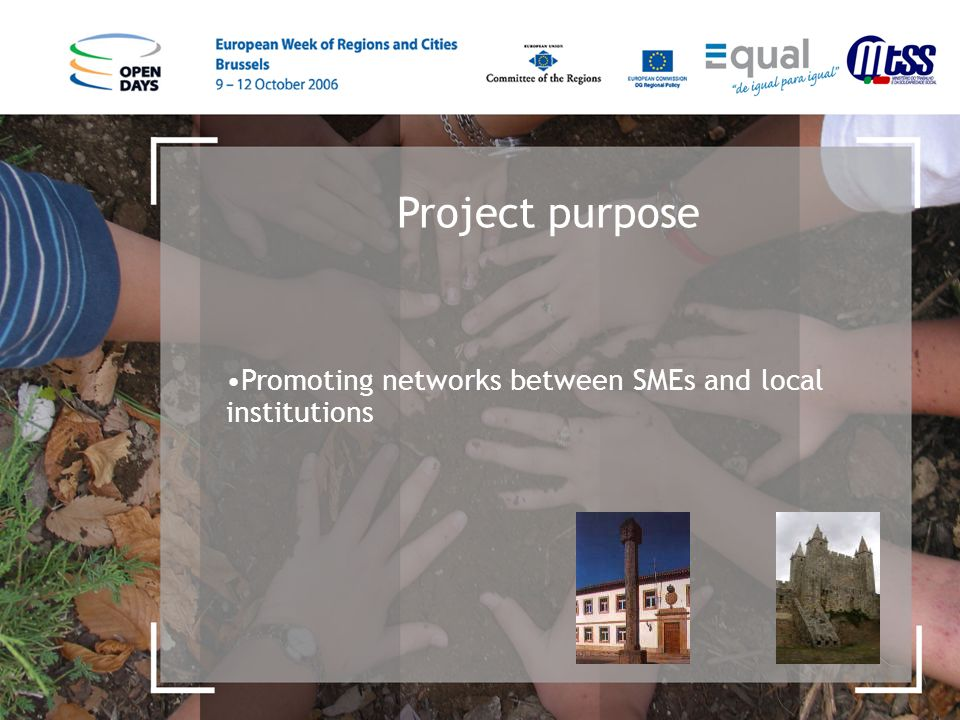 Project purpose Promoting networks between SMEs and local institutions