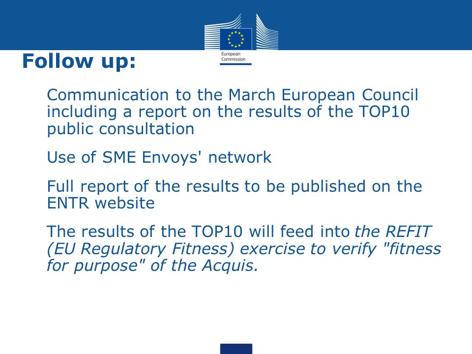 Follow up: Communication to the March European Council including a report on the results of the TOP10 public consultation Use of SME Envoys' network F