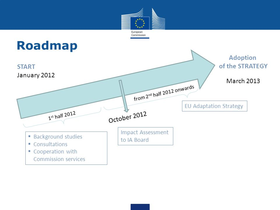 Roadmap March 2013 Adoption of the STRATEGY Background studies Consultations Cooperation with Commission services 1 st half 2012 October 2012 Impact A