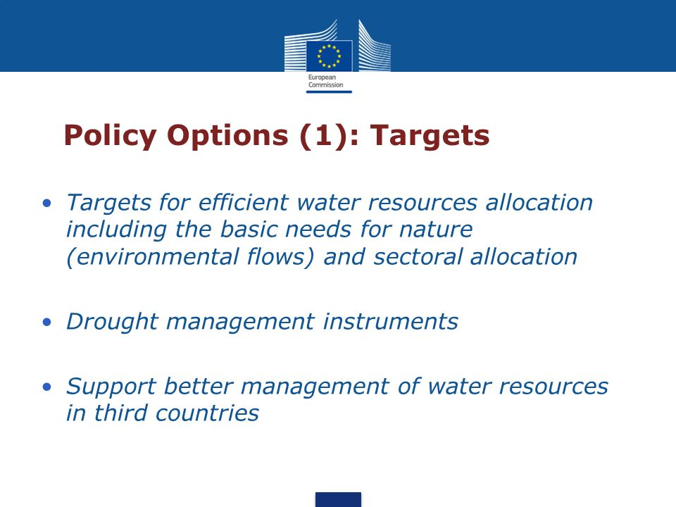 Policy Options (1): Targets Targets for efficient water resources allocation including the basic needs for nature (environmental flows) and sectoral a