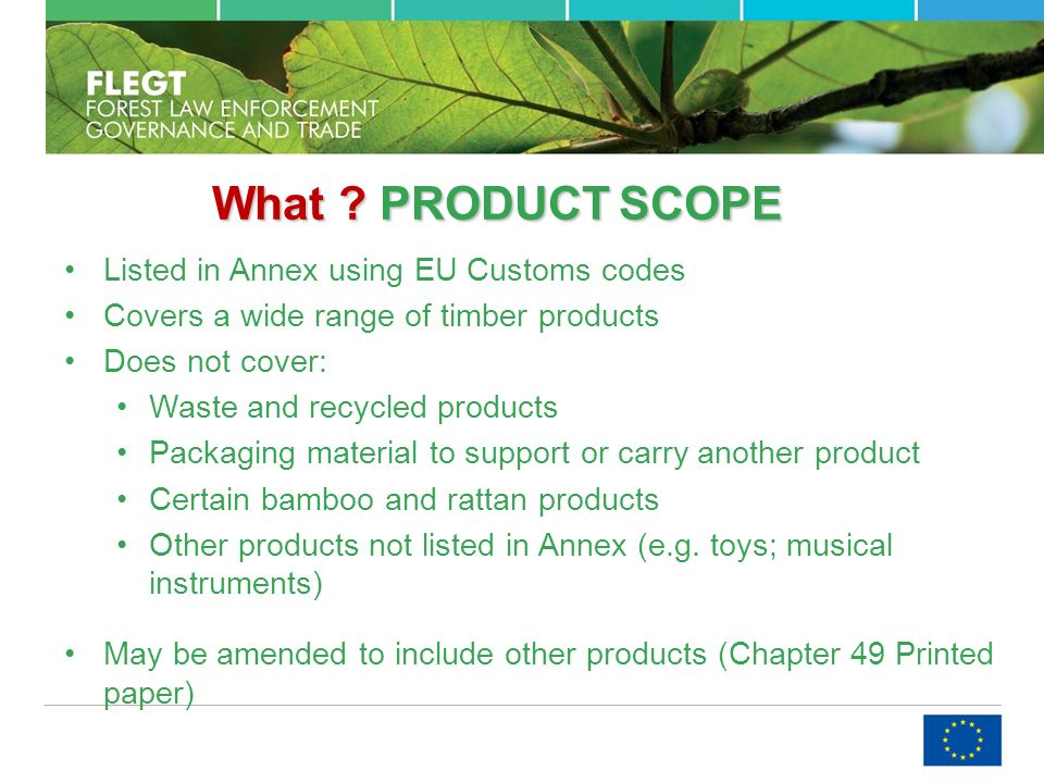 What . PRODUCTSCOPE What .