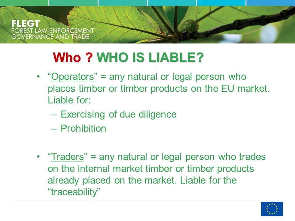 Who . WHO IS LIABLE.