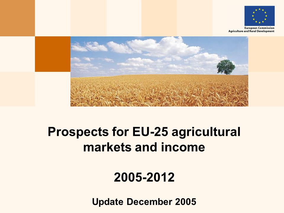 Prospects for EU-25 agricultural markets and income Update December 2005