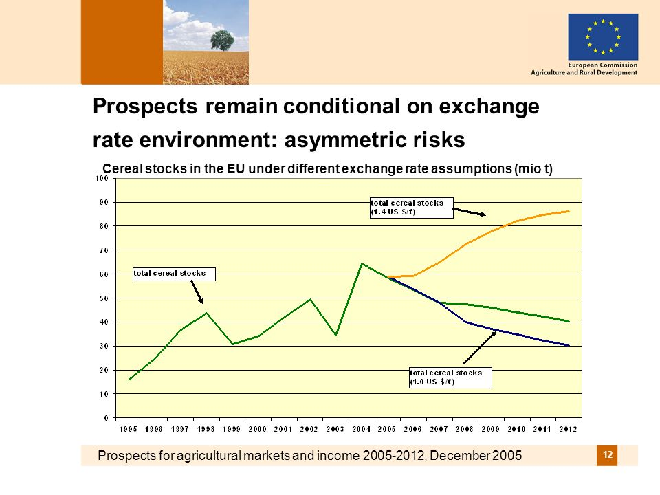 Prospects for agricultural markets and income 2005-2012, December 2005 12 Prospects remain conditional on exchange rate environment: asymmetric risks Cereal stocks in the EU under different exchange rate assumptions (mio t)