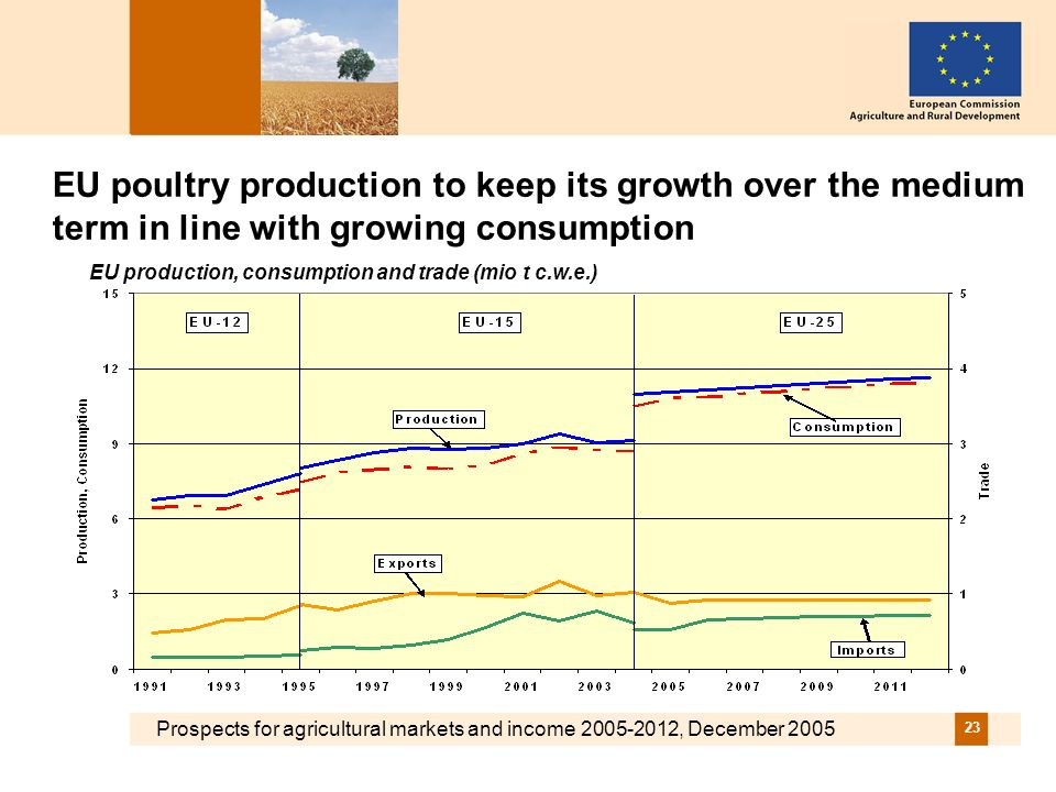 Prospects for agricultural markets and income 2005-2012, December 2005 23 EU poultry production to keep its growth over the medium term in line with growing consumption EU production, consumption and trade (mio t c.w.e.)