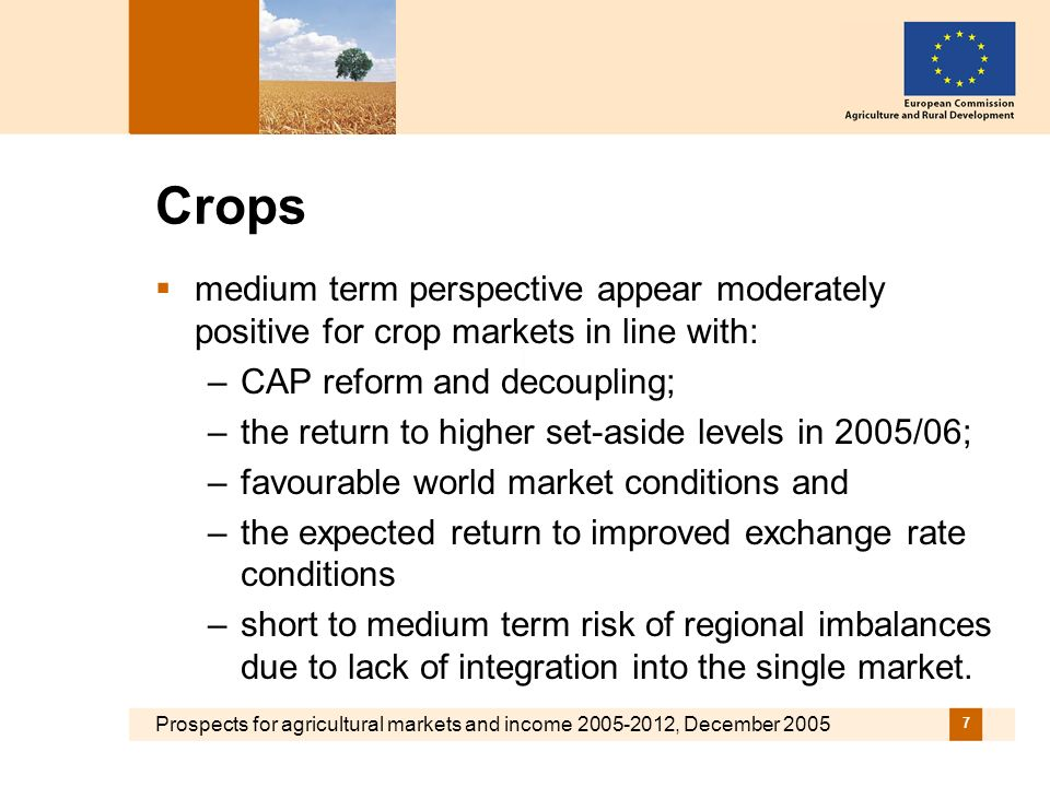 Prospects for agricultural markets and income , December Crops medium term perspective appear moderately positive for crop markets in line with: –CAP reform and decoupling; –the return to higher set-aside levels in 2005/06; –favourable world market conditions and –the expected return to improved exchange rate conditions –short to medium term risk of regional imbalances due to lack of integration into the single market.