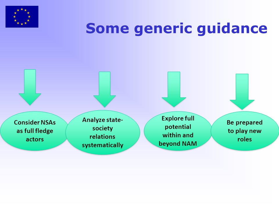 Some generic guidance Consider NSAs as full fledge actors Analyze state- society relations systematically Explore full potential within and beyond NAM Be prepared to play new roles