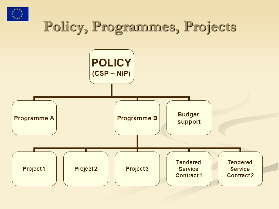 Policy, Programmes, Projects POLICY (CSP – NIP) Programme AProgramme B Project 1Project 2Project 3 Tendered Service Contract 1 Tendered Service Contract 2 Budget support