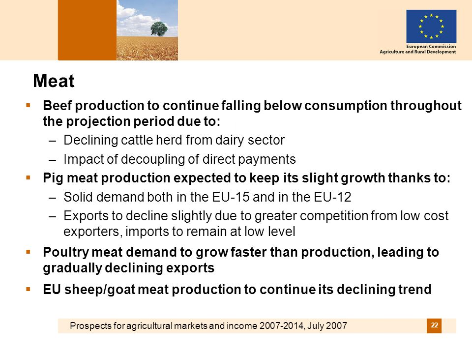 Prospects for agricultural markets and income 2007-2014, July 2007 22 Meat Beef production to continue falling below consumption throughout the projection period due to: –Declining cattle herd from dairy sector –Impact of decoupling of direct payments Pig meat production expected to keep its slight growth thanks to: –Solid demand both in the EU-15 and in the EU-12 –Exports to decline slightly due to greater competition from low cost exporters, imports to remain at low level Poultry meat demand to grow faster than production, leading to gradually declining exports EU sheep/goat meat production to continue its declining trend