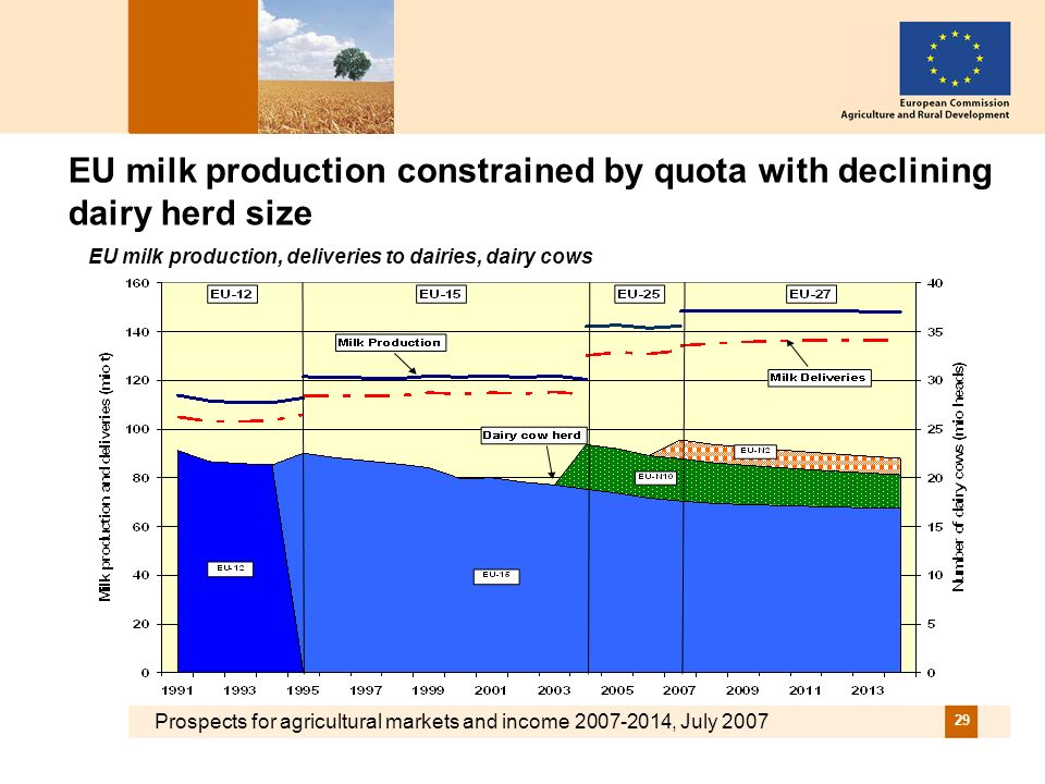 Prospects for agricultural markets and income 2007-2014, July 2007 29 EU milk production constrained by quota with declining dairy herd size EU milk production, deliveries to dairies, dairy cows