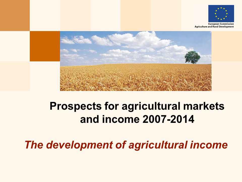 The development of agricultural income Prospects for agricultural markets and income 2007-2014
