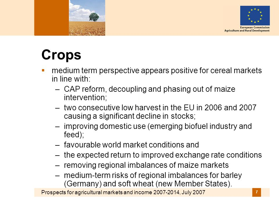 Prospects for agricultural markets and income 2007-2014, July 2007 7 Crops medium term perspective appears positive for cereal markets in line with: –CAP reform, decoupling and phasing out of maize intervention; –two consecutive low harvest in the EU in 2006 and 2007 causing a significant decline in stocks; –improving domestic use (emerging biofuel industry and feed); –favourable world market conditions and –the expected return to improved exchange rate conditions –removing regional imbalances of maize markets –medium-term risks of regional imbalances for barley (Germany) and soft wheat (new Member States).